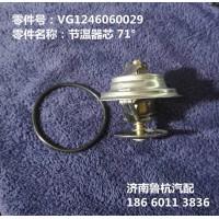 节温器芯 71°(VG1246060029)