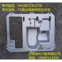 TX踏板组合支架(WG9X25360700)