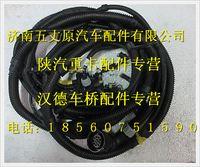 陕汽德龙发动机、变速箱电线束