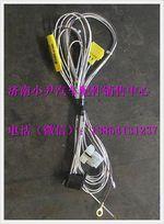 陕汽德龙工作照明灯驾驶室电线束DZ93189773412