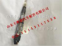 中国重汽曼MC13喷油器
