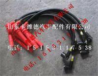潍柴WP10燃气高压导线