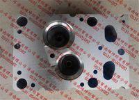 气缸盖总成(EGR 2气门)AZ1095040123