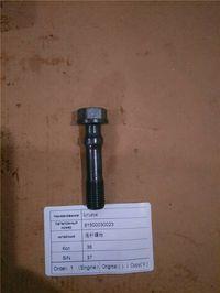 连杆螺栓81500030023