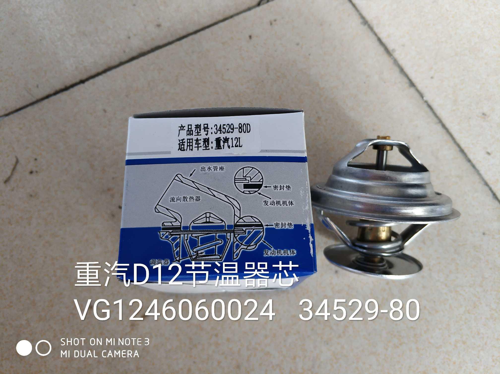 节温器芯VG1246060024